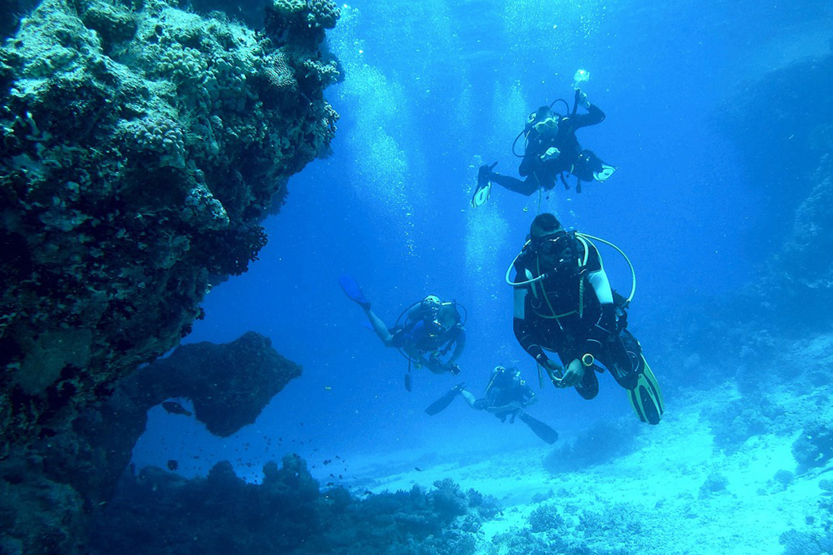 7 Reasons to Become a Scuba Diver