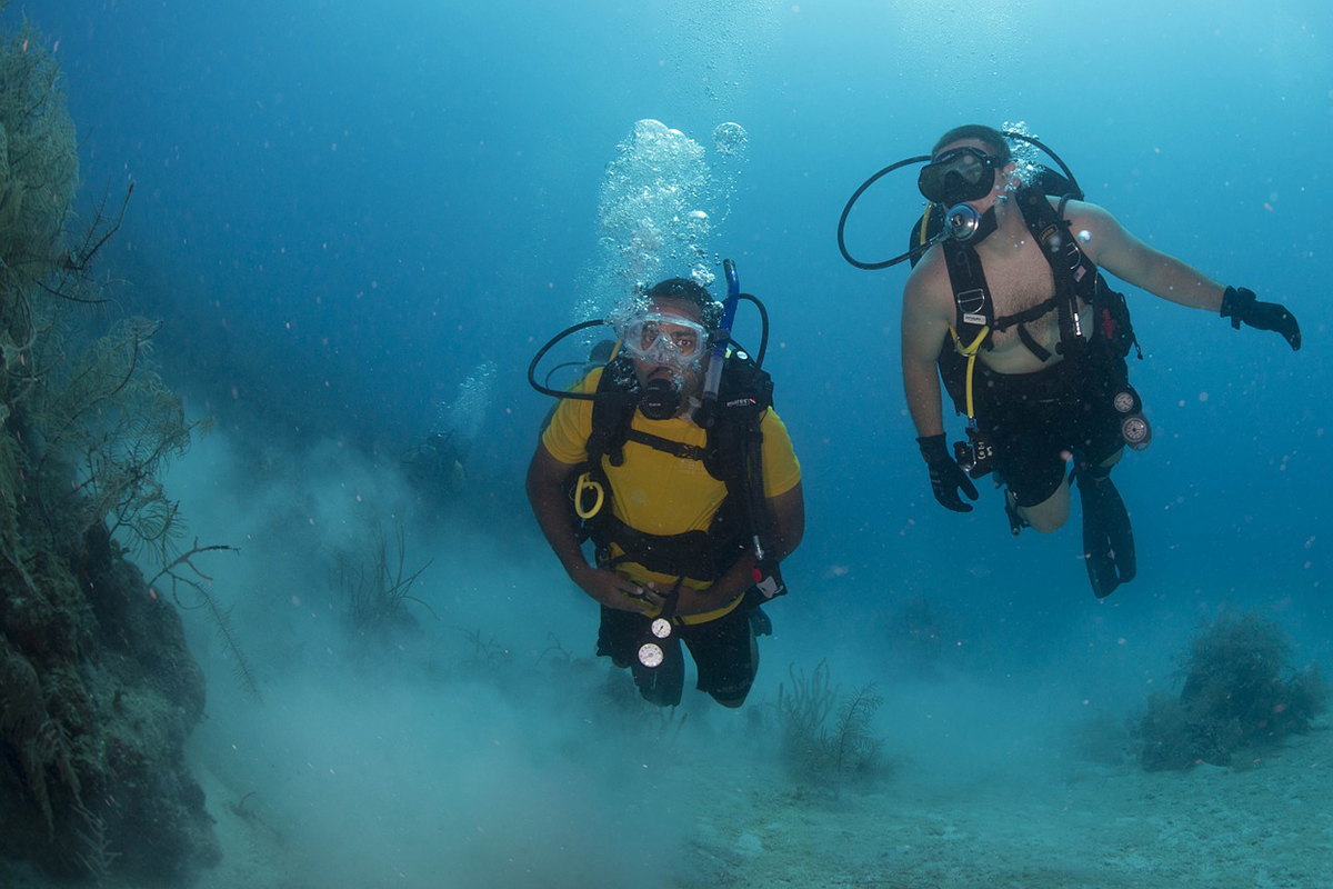 Why Diving With a Buddy is So Important